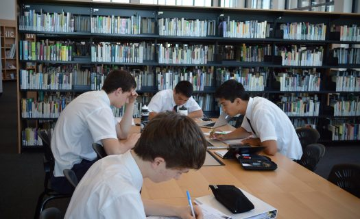 library_study